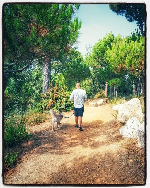 the boys Woody hehasmyheart ilovemydog purelove goldenretriever ... (Dhour choueir)