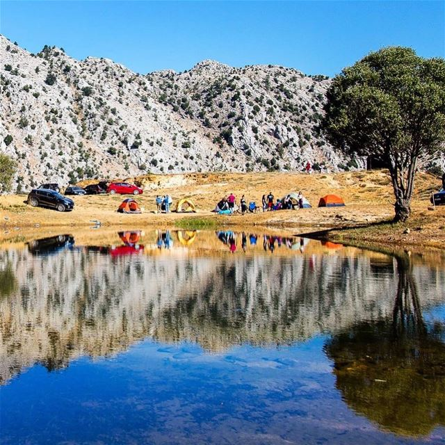 We always wing it when it comes to choosing a campsite and we always end... (El Laqloûq, Mont-Liban, Lebanon)