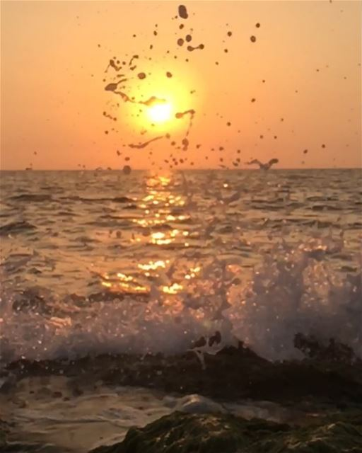🌅 .. sunset stones naqoura tyrepage macro closeup livelovelebanon...