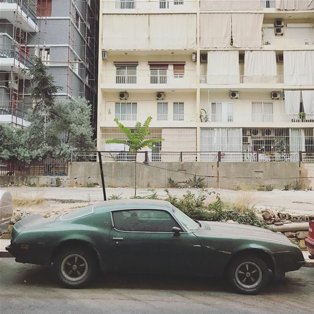 Beaters of Beirut (23) (Beirut, Lebanon)