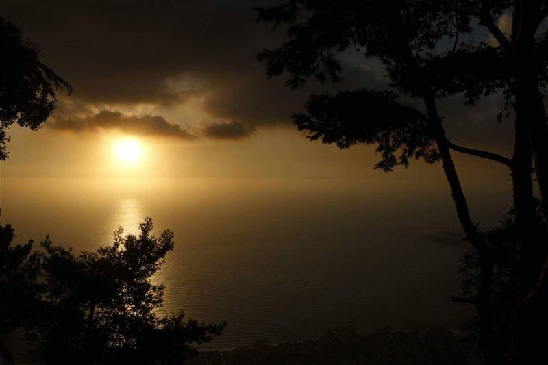 Peaceful sunset among trees over Jounieh... peaceful beautiful lebanese... (Harisa, Mont-Liban, Lebanon)
