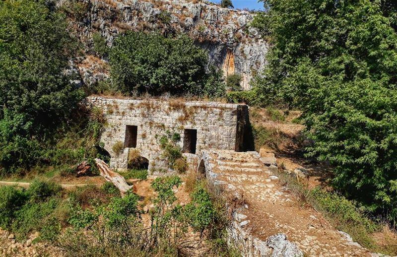 lebanon kalawounphoto lebanonhouses bestofleb thebestinlebanon 🌳 ... (Ejdabrine, Liban-Nord, Lebanon)