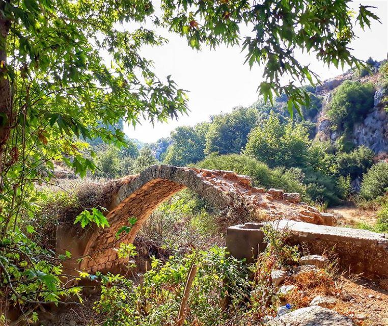 river bridge nut lebanon kalawounphoto thebestinlebanon 🌳 ... (Ejdabrine, Liban-Nord, Lebanon)