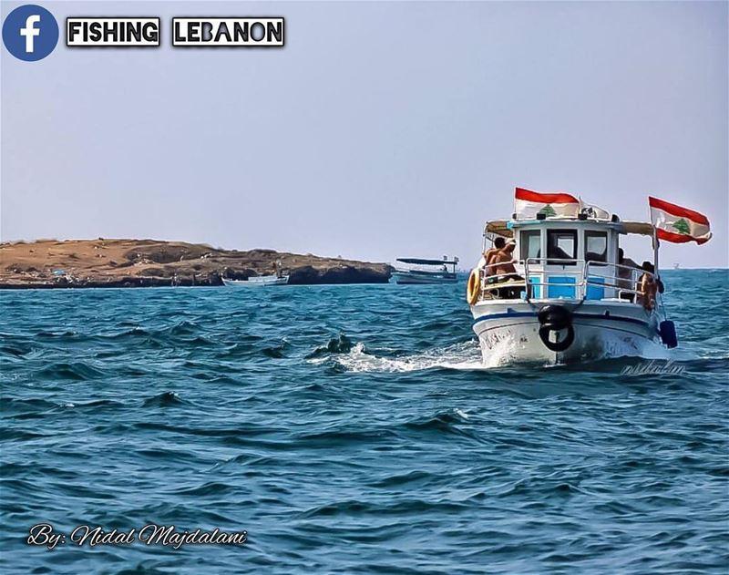 Nidal Majdalani - Lebanon __________________________ sealife creature ... (Beirut, Lebanon)