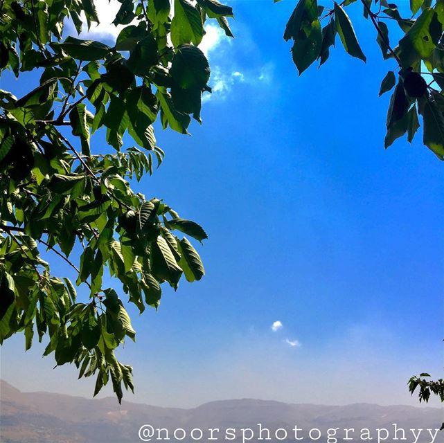 Nature is baeee💙- noorsphotographyy lebanon ptk_lebanon super_lebanon... (Wata El Joz)