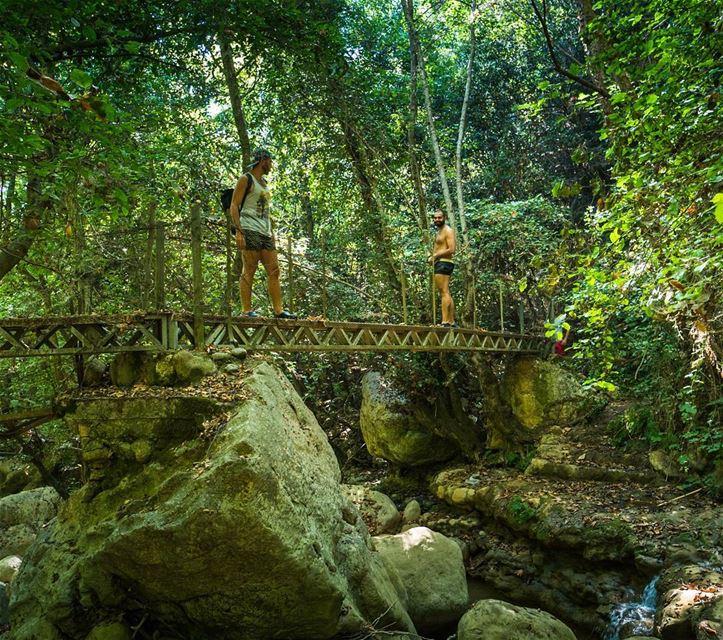 The foot bridge lebanon ... (Rechmaya)