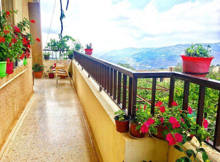 وردات الدار 🌺🍀 August balcony flowers plants afternoon lebanon ... (Mount Lebanon)