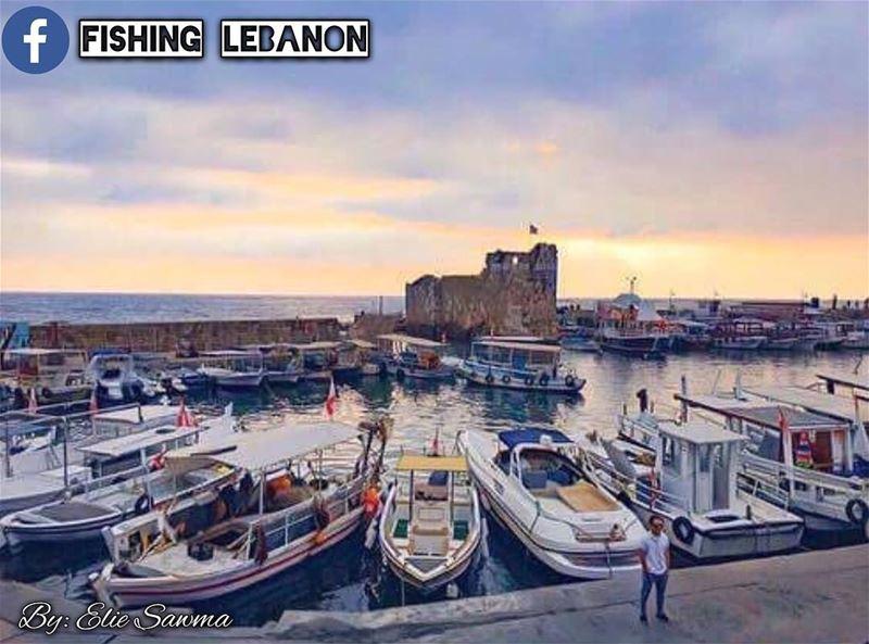 Elie Sawma @sawma.elie -Lebanon __________________________ sealife ... (Lebanon)