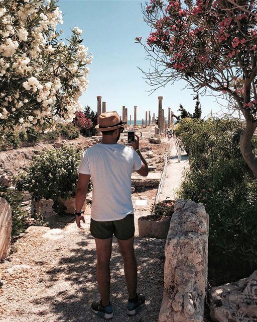🌼or 🌺? Beirut nature shotoniphone iamatraveler......- [ ] vsco... (Soûr, Al Janub, Lebanon)