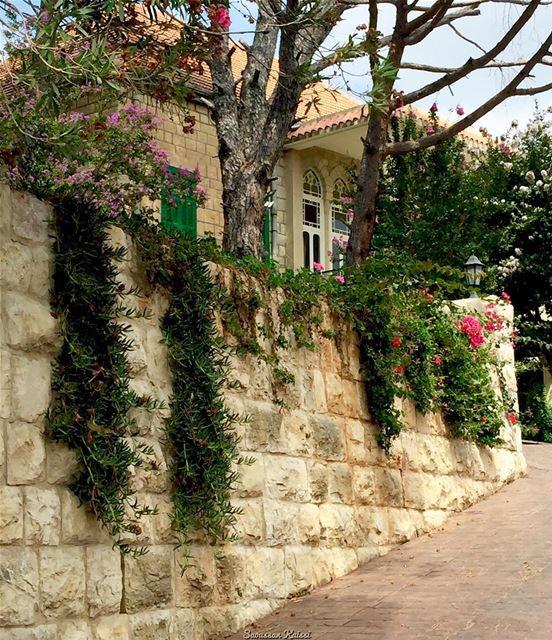nostalgia oldhouse heritage architecture lebanonhouses flowers ...