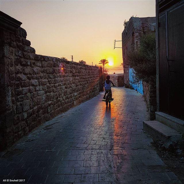 tb sunset sour southlebanon bike kids fun old city shadow palm ... (Soûr, Al Janub, Lebanon)