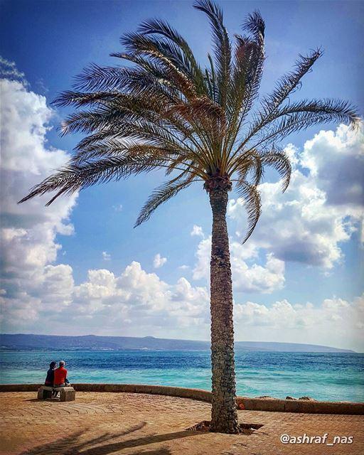 بتذكر آخر مرة شفتك سنتابتذكر وقتا آخر كلمة قلتا...وما عدت شفتك، وهلّأ شفت (Tyre, Lebanon)