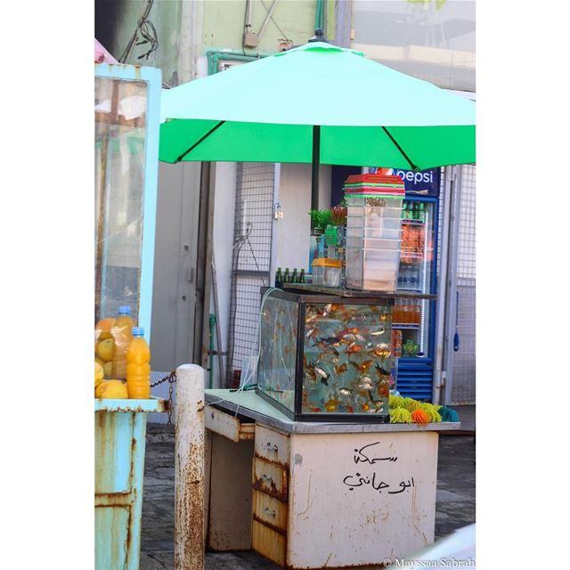 """""""Vibrant chaos, Lebanon"""" streetphotography canon canonME lebanon ..."""