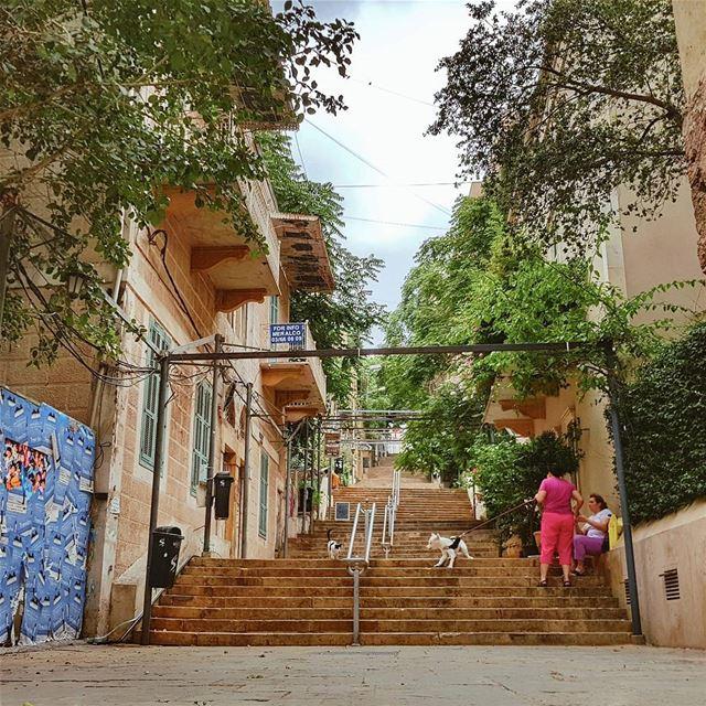 Beirut street life: the battle is real 😎⠀Бейрут просыпается... Торговцы... (Beirut, Lebanon)