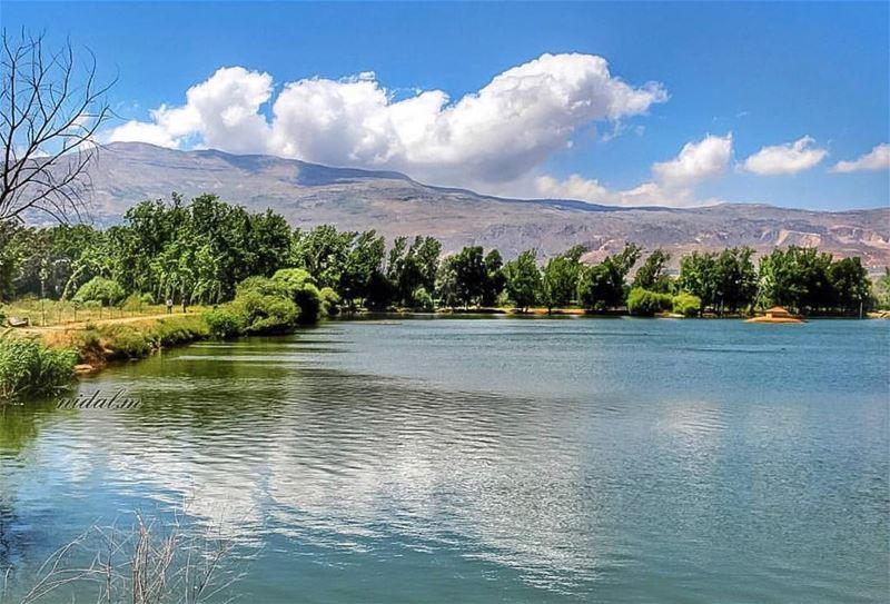Nature does not ask ... it just gives🍀...📸: @nidal.majdalani ...... (Deïr Taanâyel, Béqaa, Lebanon)