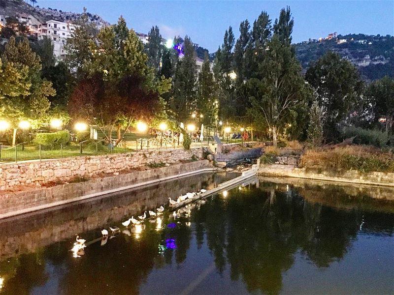 🌳🌿🐦🍃 (Jezzîne, Al Janub, Lebanon)