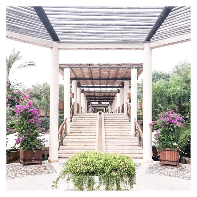 Stairway to heaven 🌺 (Edde Sands - Byblos)