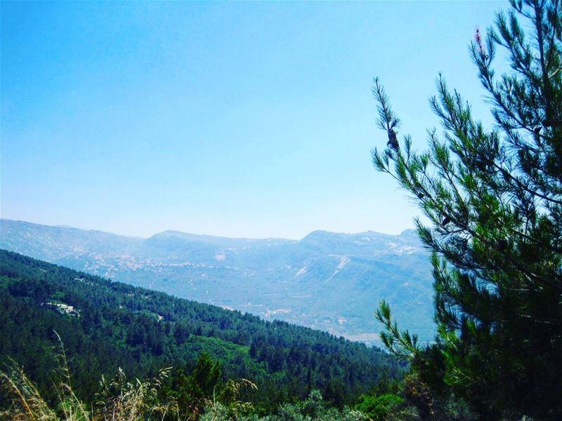 nature ilovenature lebanon livelovelebanon ...