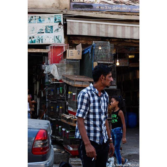 """""""Vibrant chaos, Lebanon"""" streetphotography canon canonME ..."""