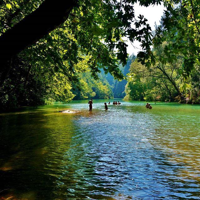 Chpuen Lake chouen naheribrahim river lake jabalmoussa reserve ...