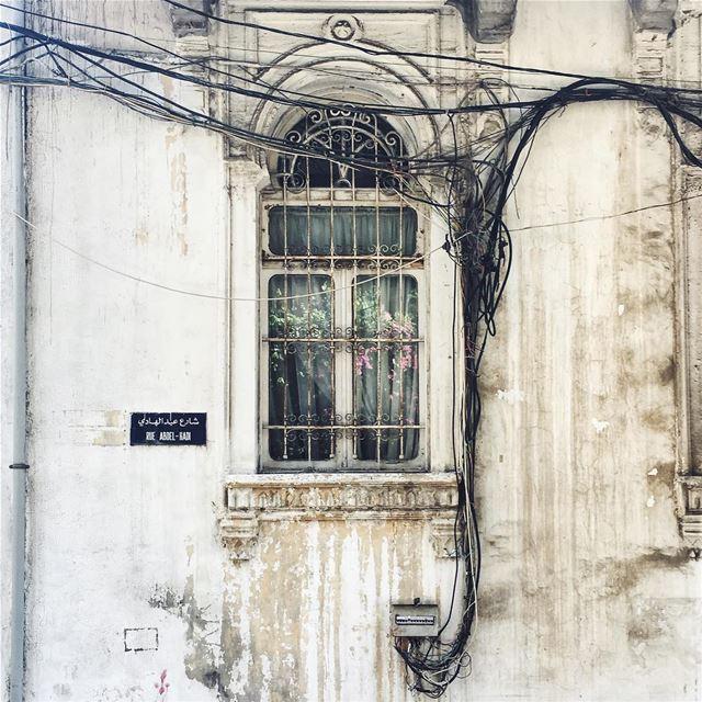 🌸 شارع عبد الهادي