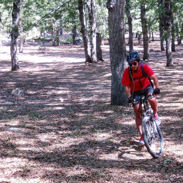 bike bikelife bikes veloroutelb bikelebanon veloroute sports ...