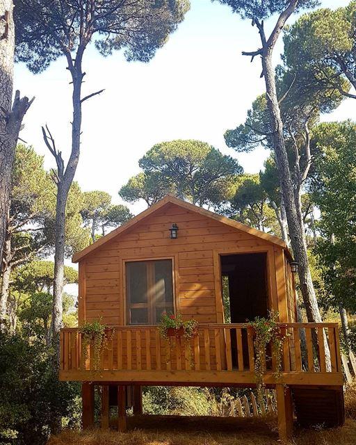 La maison de la foret 🏡 livelovebeirut livelovelebanon m_illusion ... (La Maison de la Forêt)