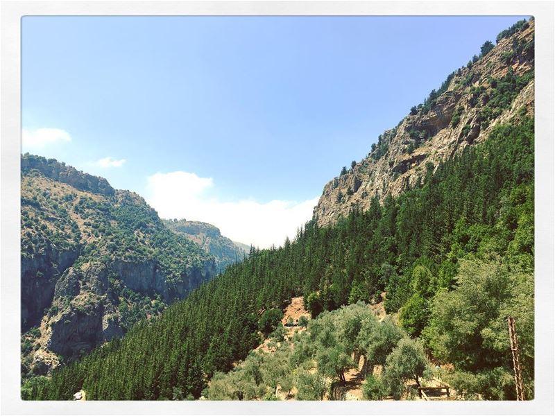 ... (Kadisha Valley)
