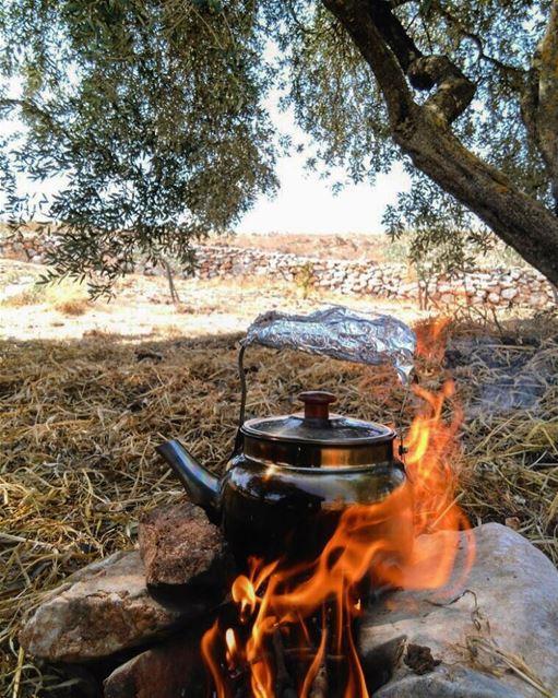 TeaTime. . hiking picnic marounelras lebanon naturelovers ... (Maroun El Ras)