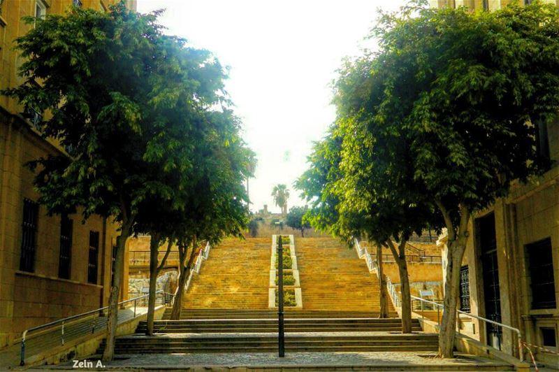 garden noperson green trees summer tourism outdoor landscape ... (Downtown Beirut)