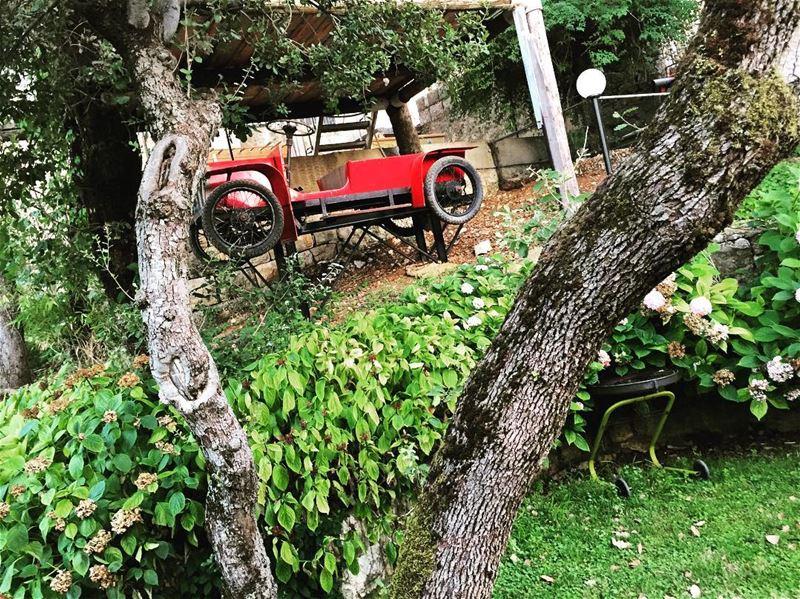 ig_lebanon ig_week_nature naturehippys_ naturelovers ... (Achkoute, Mont-Liban, Lebanon)