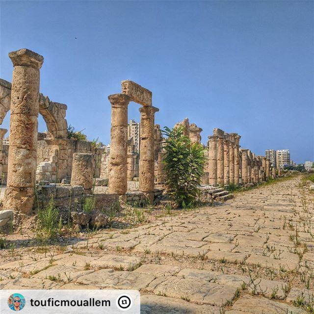 """ sour tyre roman ruins romanruins lebanon livelovetyre ..."