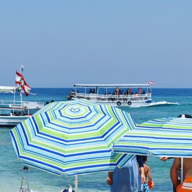 🏖🌊🚤••••••••••••• island sea summer Lebanon thisislebanon ... (Palm Islands- El Mina Lebanon)