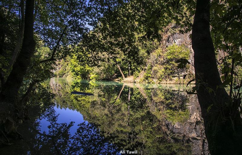 Lebanese beautiful nature 💚 waterscape nature reflection chowen ... (نهر شوان)
