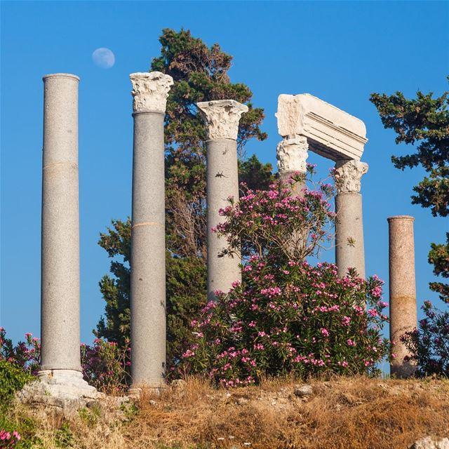 🇱🇧 Ruínas romanas em Byblos. Uma das cidades mais antigas do mundo e que... (Byblos - Jbeil)