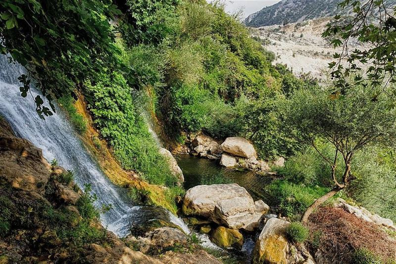 kfarhilda lebanon waterfall river nature landscape ... (Kfarhilda, North)