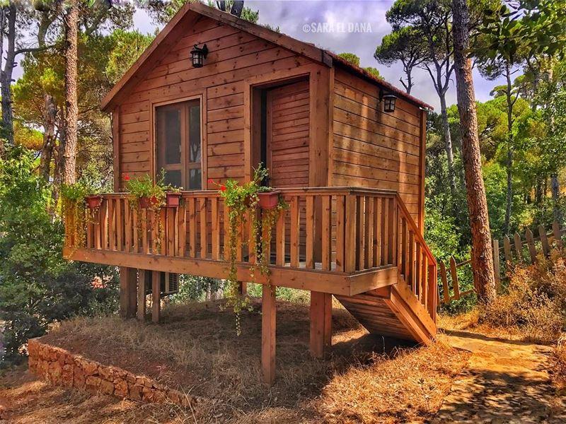 Let's stay at home for the weekend! 🐍 (La Maison de la Forêt)