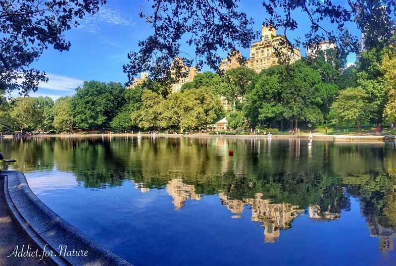 Have a great weekend my friends ❤️ ---------------------------------------- (New York, Central Park)