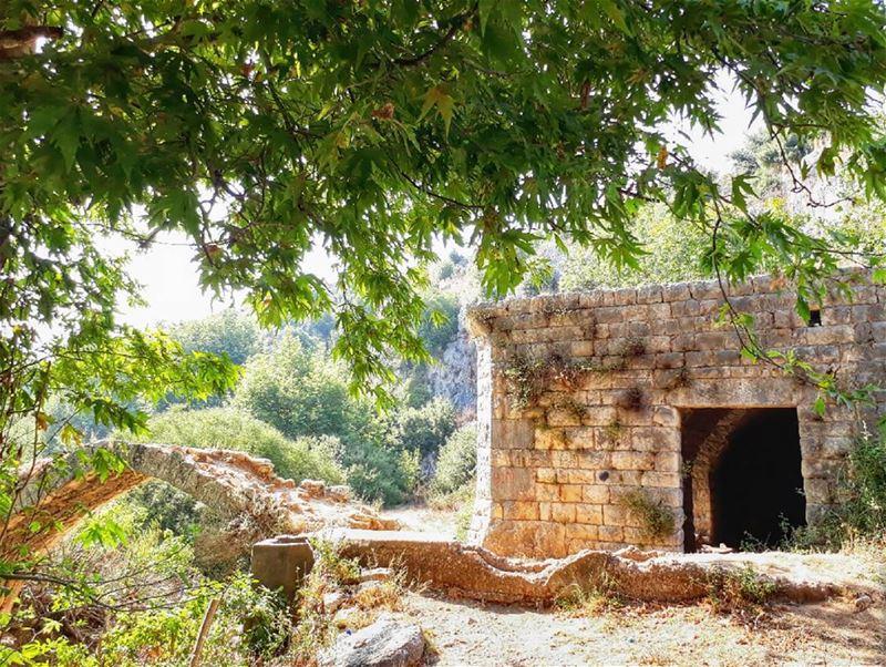 koura lebanon kalawounphoto monbeauliban insta_lebanon 🌞 ... (Ejdabrine, Liban-Nord, Lebanon)