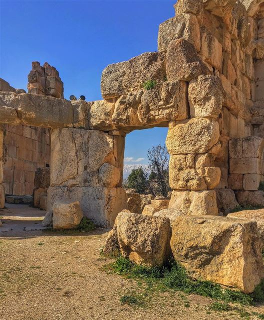 Framed by history nature baalbek places archaeology wonders ... (Baalbek, Lebanon)