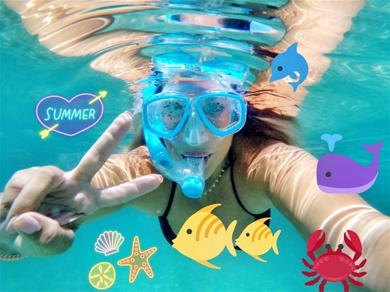 Best way to spend a Sunday - Under the sea!!! 🌊🐠🌊 ...