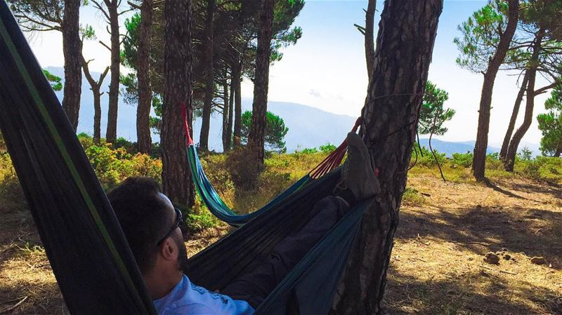 My name is Haytham and I am a workaholic... naturetherapy  hammock ... (Lebanon)