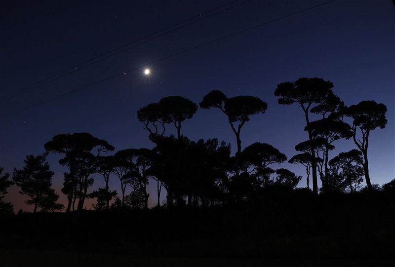 🌙 .. night nightphotography nightshot landscape landscapephotography... (Jezzîne, Al Janub, Lebanon)