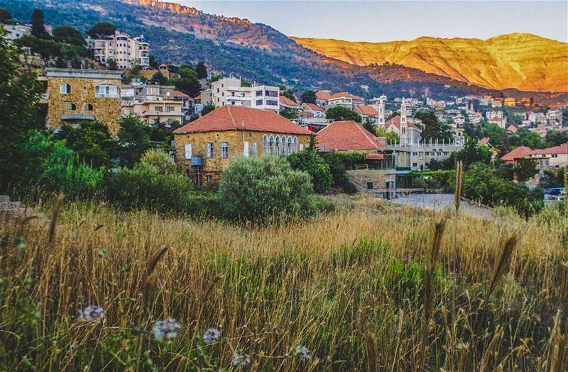 When the sun decides to paint Sannine 💛................ (Baskinta, Lebanon)