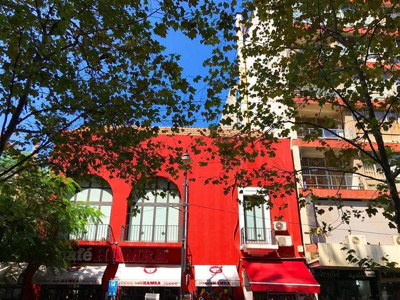 🚗❤️🚘🌹 (Hamra street , Beirut - شارع الحمرا ، بيروت)