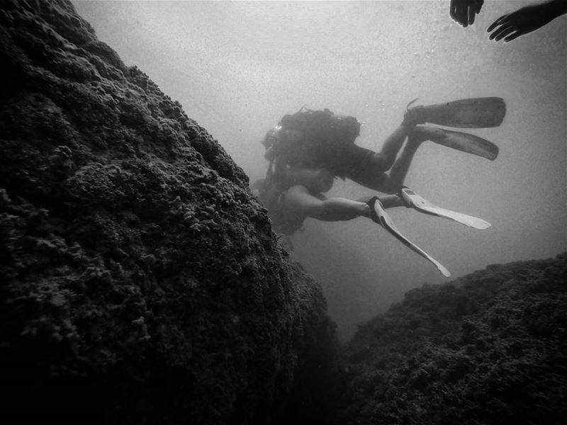 Try to catch divers - ichalhoub in Batroun north Lebanon shooting with...
