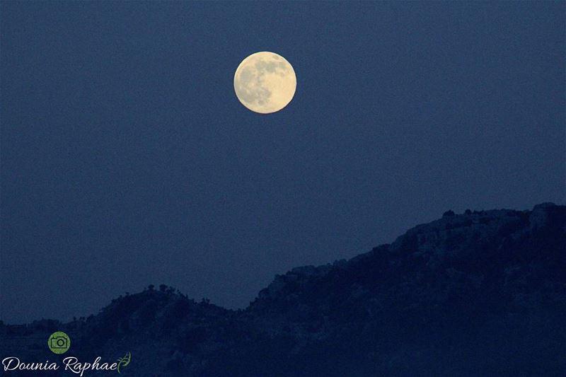Buck Moon 🍃...Canon EOS 💯DJul 9, 2017... moon buckmoon2017 ... (I.C.N)