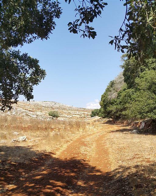 yaroun yarounday southlebanon mylebanon lebanoninapicture nature ...