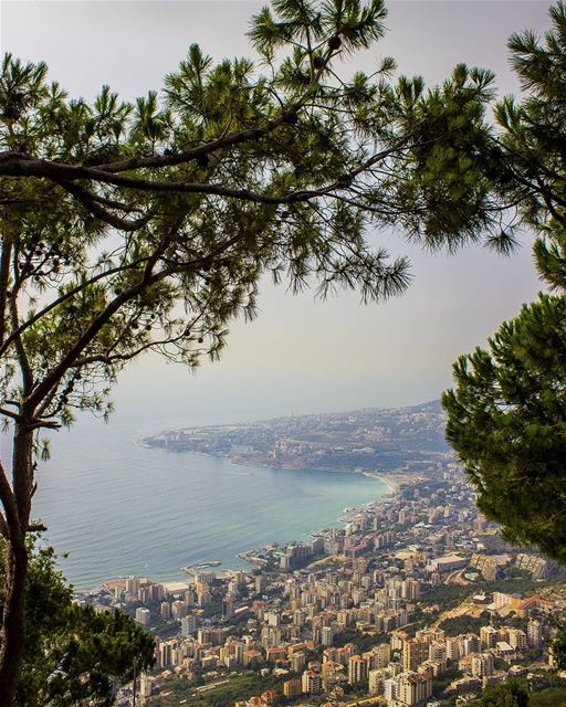 """""""You can't start the next chapter of your life, if you keep re-reading the... (Harîssa, Mont-Liban, Lebanon)"""