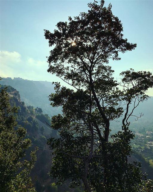 naturelover naturephotography jezzine lebanon explorelebanon ... (Jezzine District)